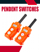 Pendent Switches